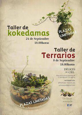 Délices du Ciel repetirá los talleres de Kokedamas y Terrarios en septiembre