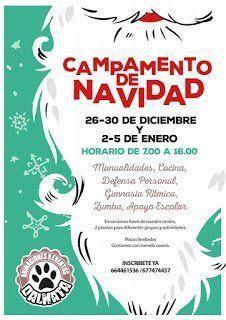 Animaciones y Eventos Dálmata organiza un campamento infantil para la época navideña