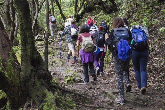 Ayuntamiento programa nuevas excursiones y talleres de sensibilización ambiental