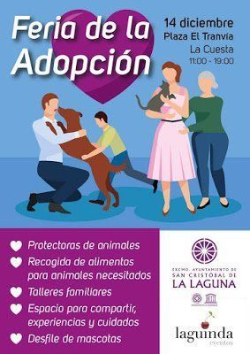 El Ayuntamiento de La Laguna organiza la primera Feria de Adopción de mascotas