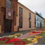 La Laguna apuesta por recuperar la tradición de los tapices florales en la festividad del Corpus Christi